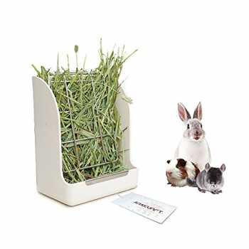 porcellini d/'India Conigli Animali Piccoli furetti Colore: Verde Erogatore Automatico per ratti POPETPOP Popetop